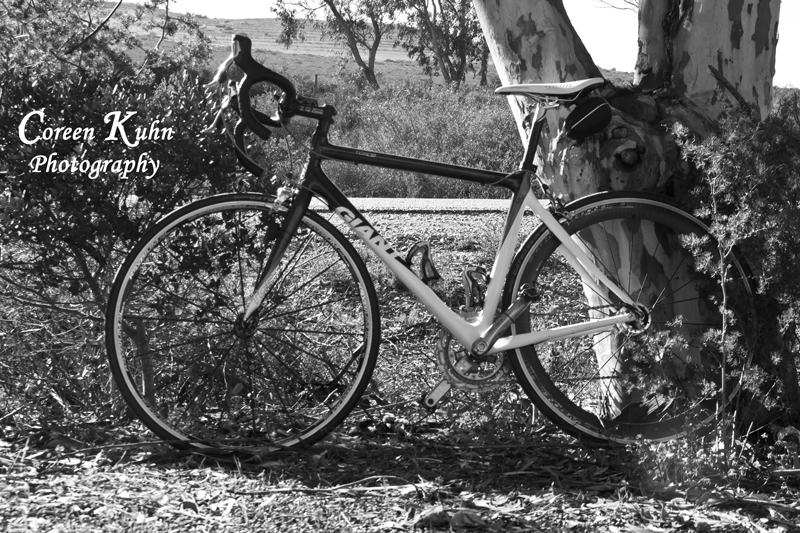 Bicycle resting Black & White
