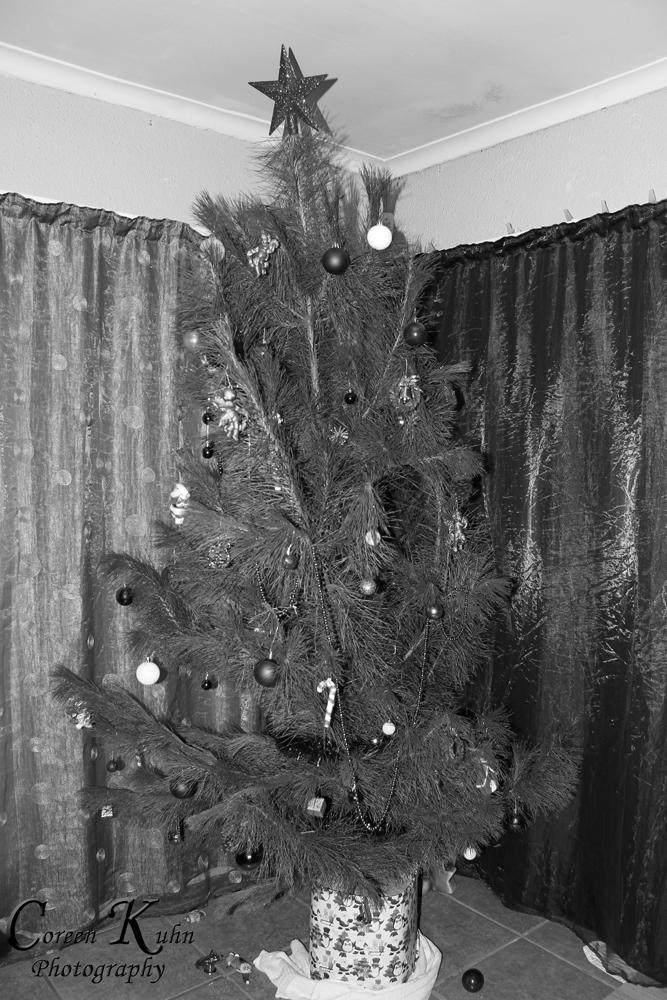 Xmas tree_1257bw