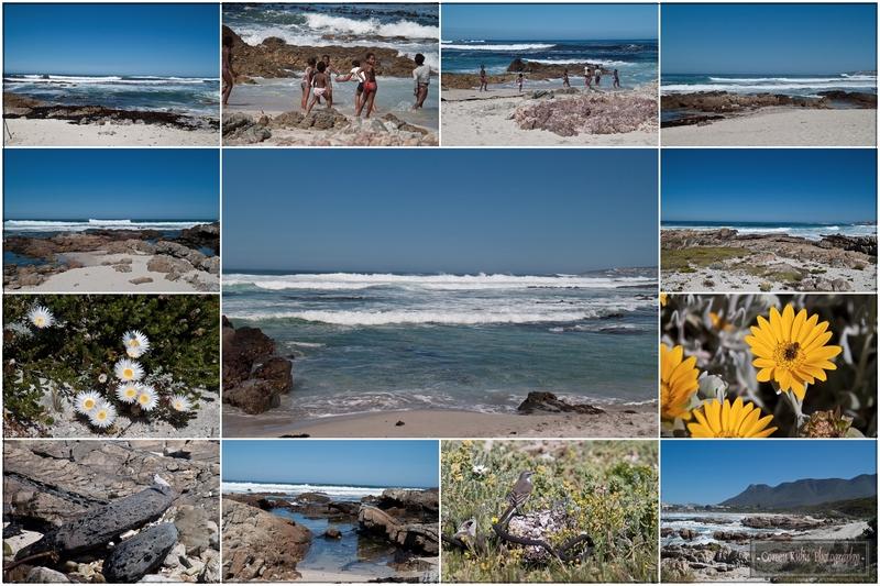 Sandbaai, Hermanus, South Coast, South Africa