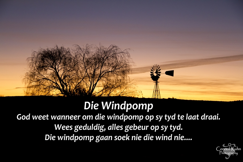 My Photo's with a Afrikaans Quote #9
