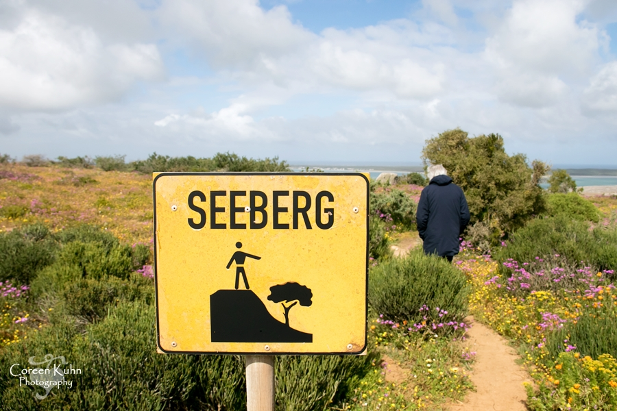 Our next stop: Seeberg Viewpoint