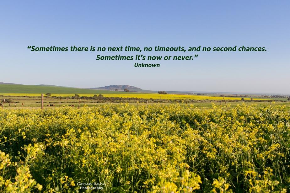 My Photo Someones words/Quote:39/365