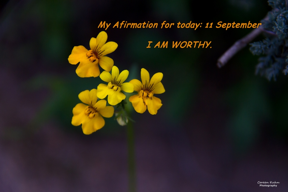 My Affirmation for today: 11 September