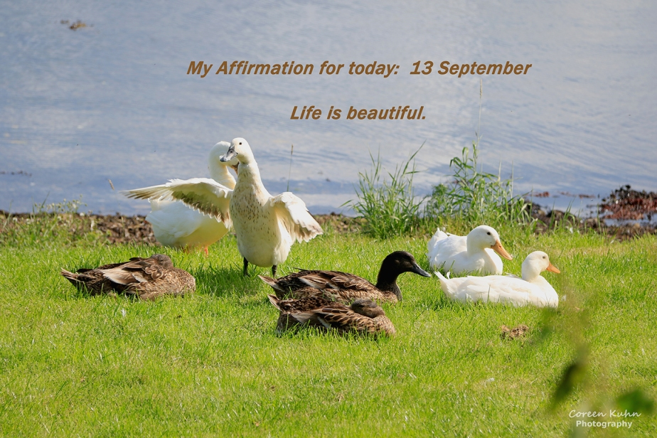 My Affirmation for today: 13 September
