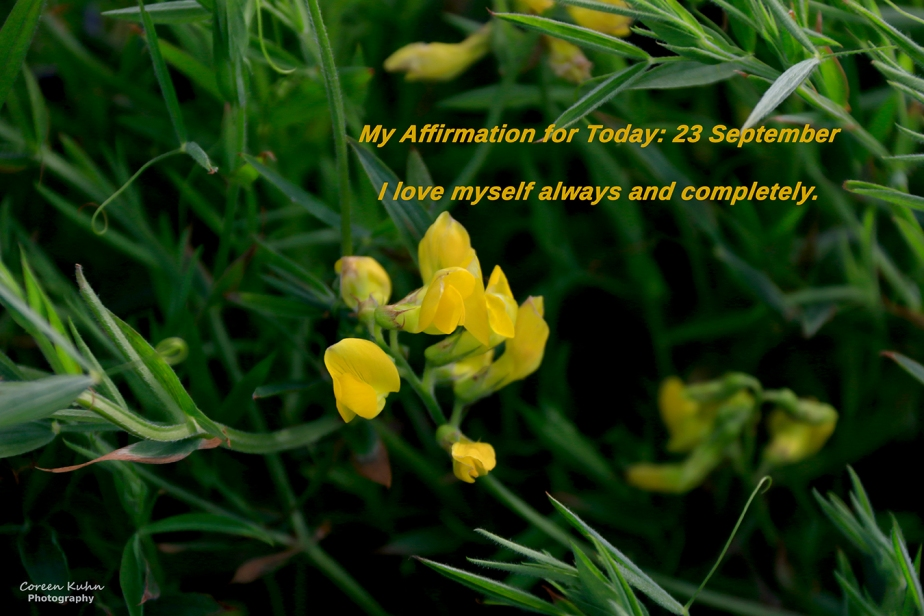 My Affirmation for today: 23 September