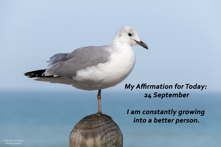 My Affirmation for today: 24 September