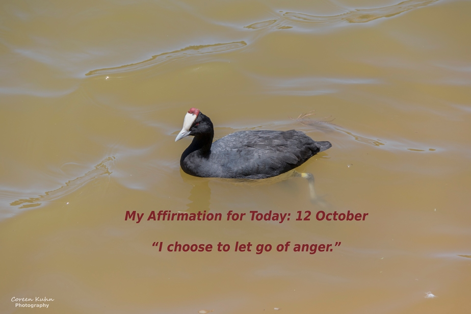 My Affirmation for Today: 12October