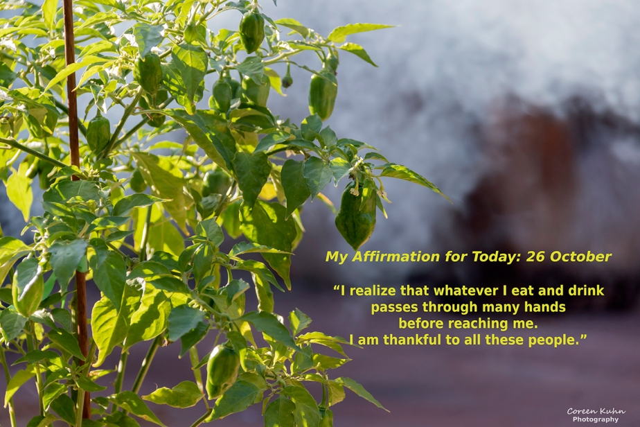 My Affirmation for Today: 26October