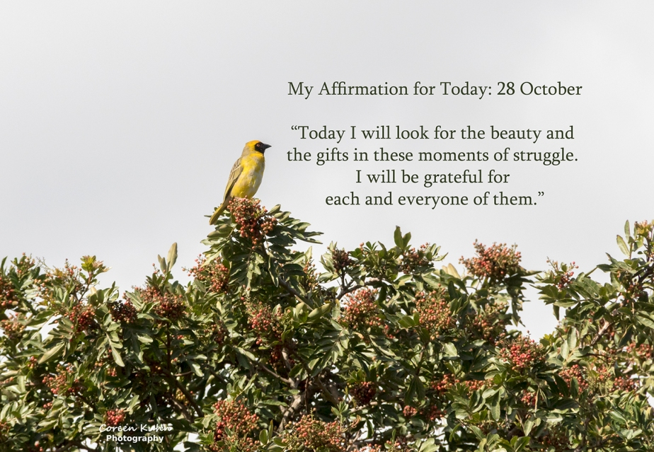 My Affirmation for Today: 28October