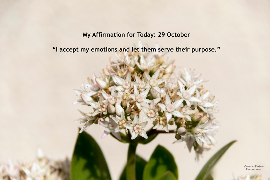 My Affirmation for Today: 29October