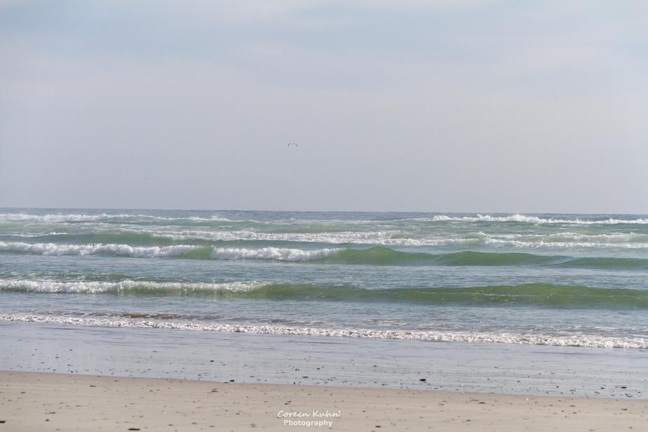 Tuesday Beach Vibes: 29 December2020