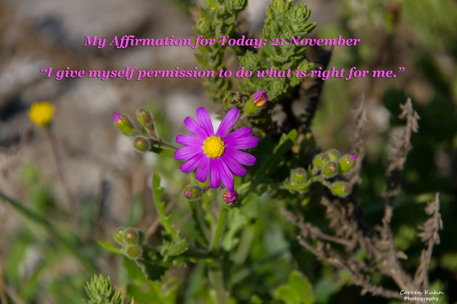 My Affirmation for Today: 21 November