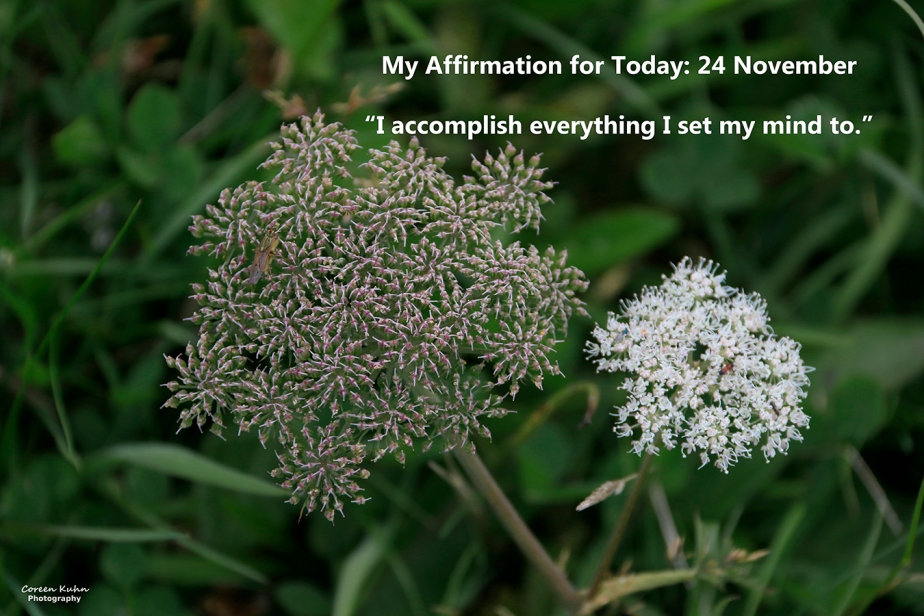 My Affirmation for Today: 24 November