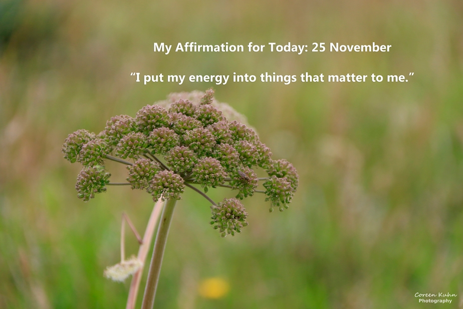 My Affirmation for Today: 25 November