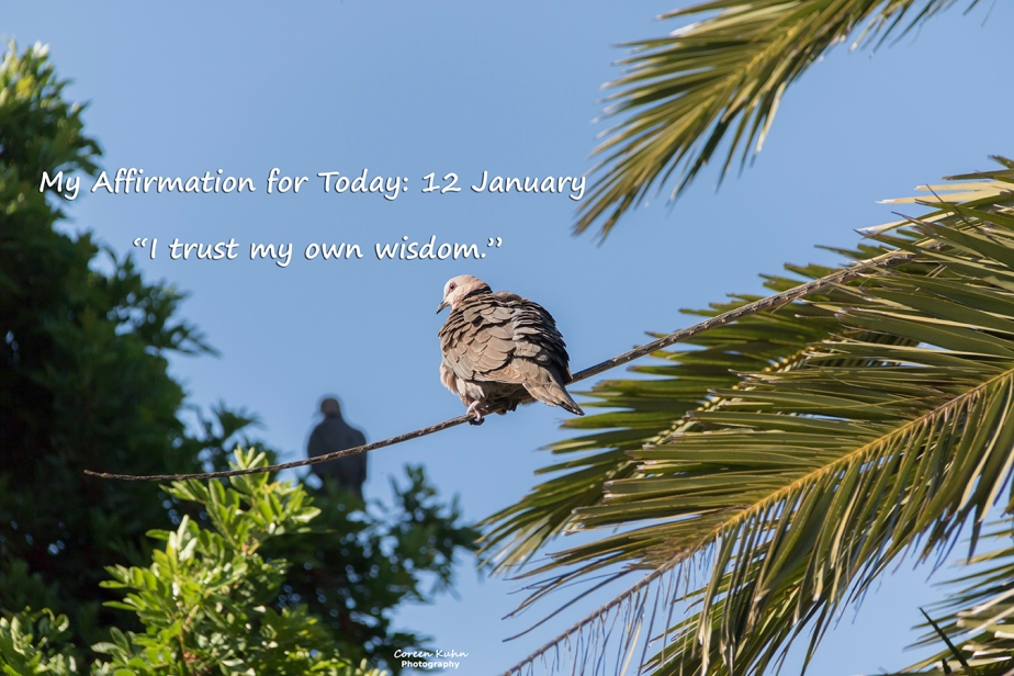 My Affirmation for Today: 12 January