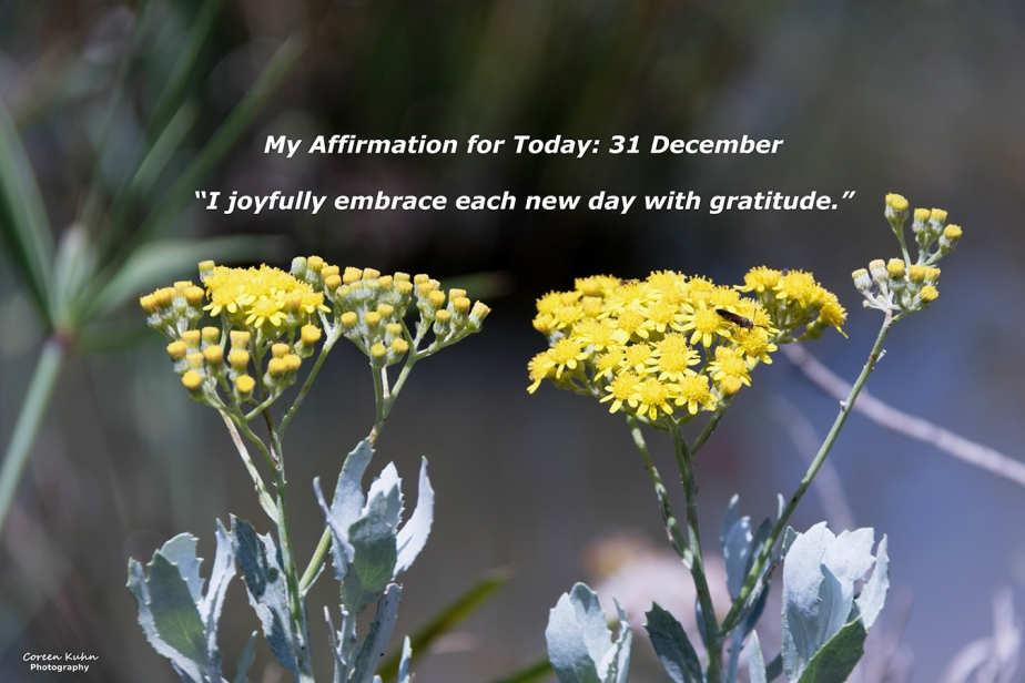 My Affirmation for Today: 31December