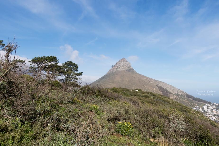Saturday Landscapes: 16 January2021
