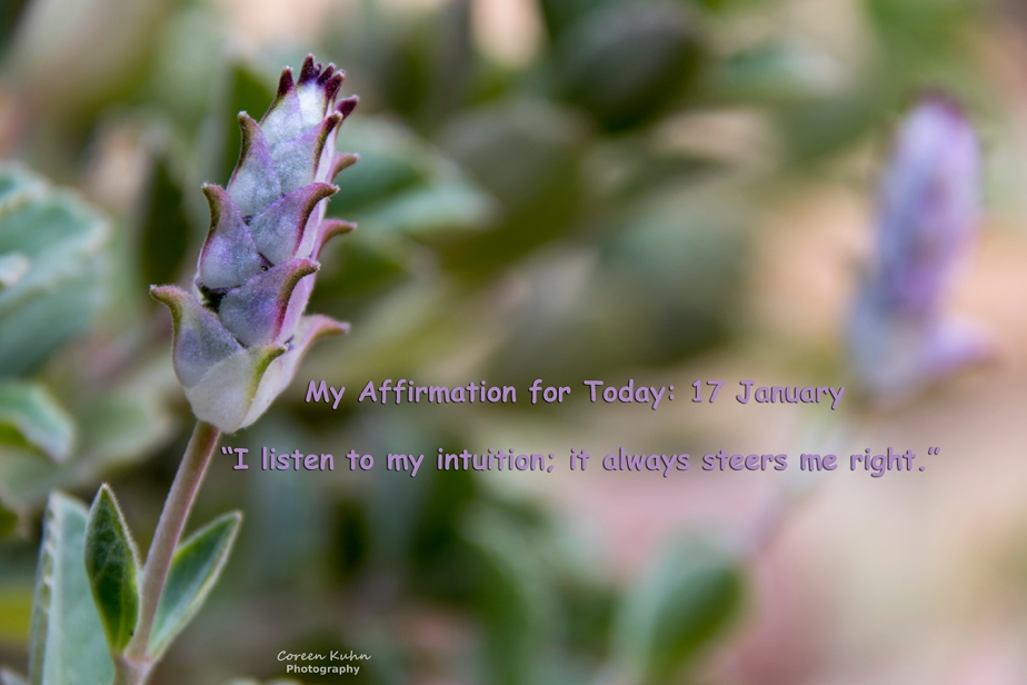 My Affirmation for Today: 17 January