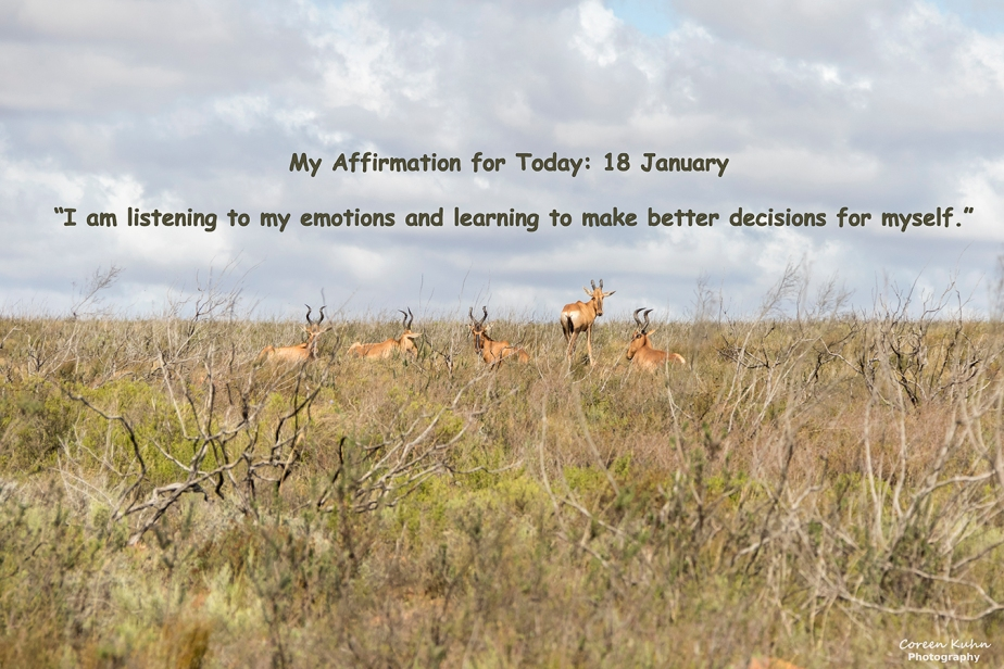 My Affirmation for Today: 18 January
