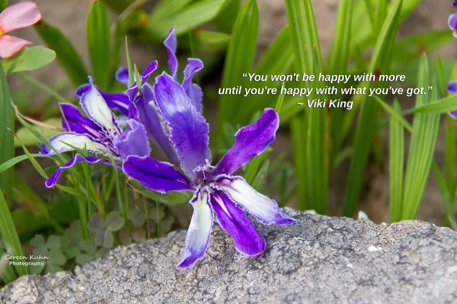 My Photo Someone's Quote:215/365