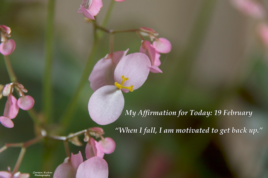 My Affirmation for Today: 19February