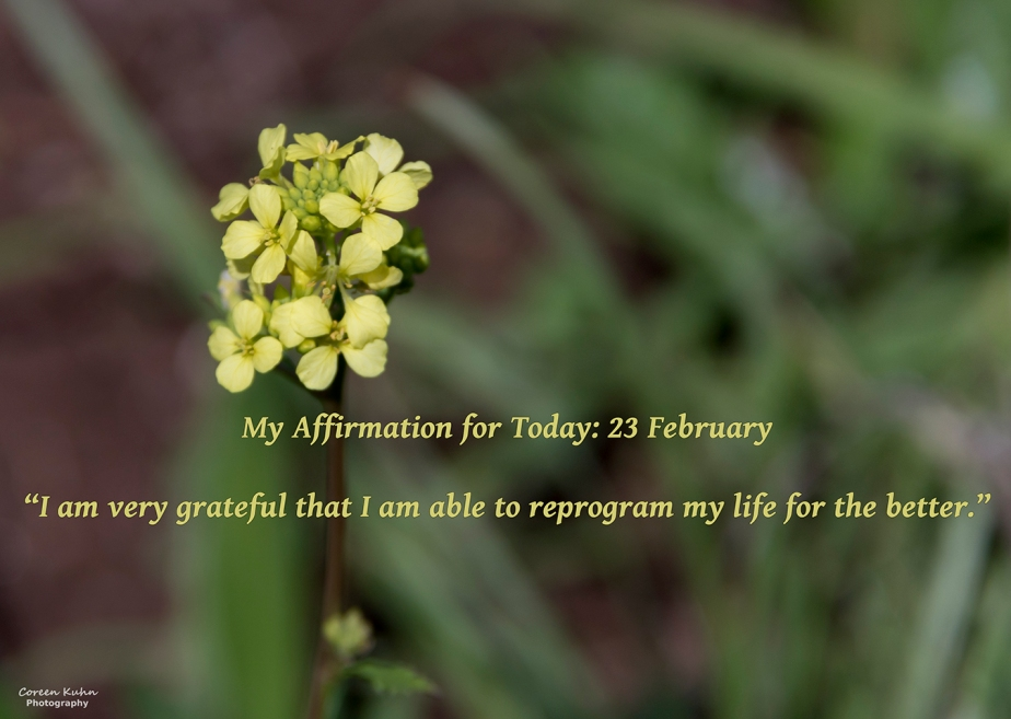 My Affirmation for Today: 23February