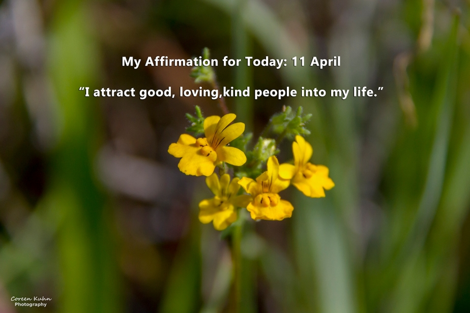 My Affirmation for Today: 11April