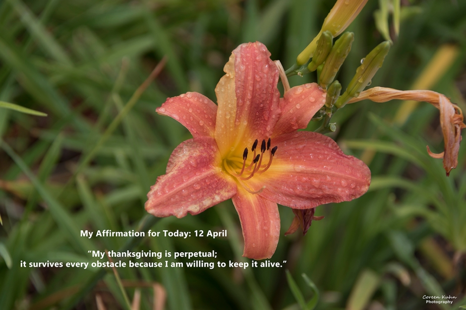 My Affirmation for Today: 12April