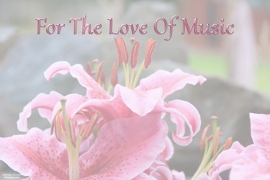 For The Love Of Music: 15 May 2021