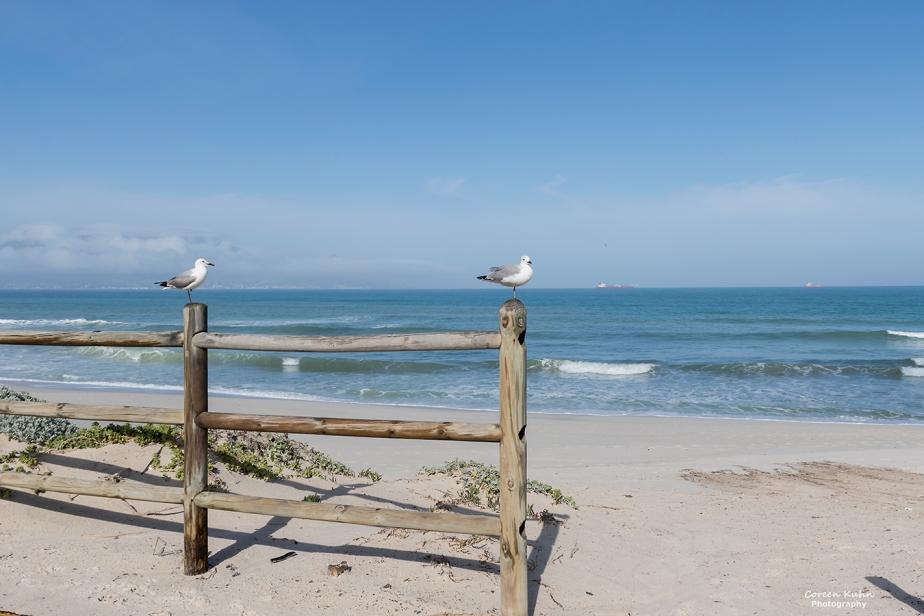 Tuesday Beach Vibes: 10 August2021