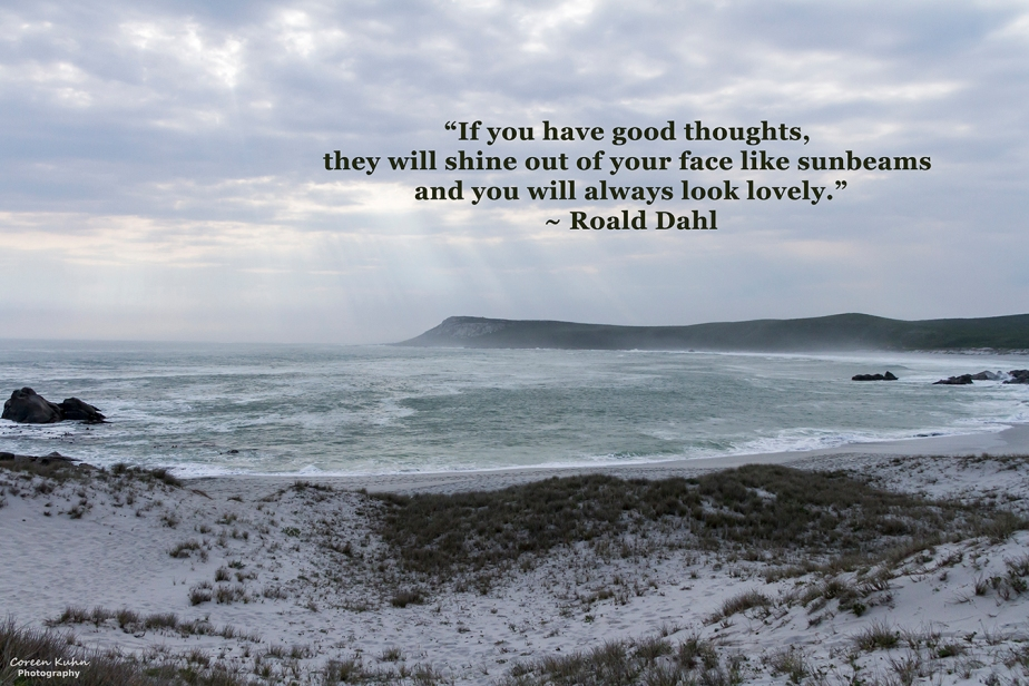 My Photo Someone's Quote: 3 August2021