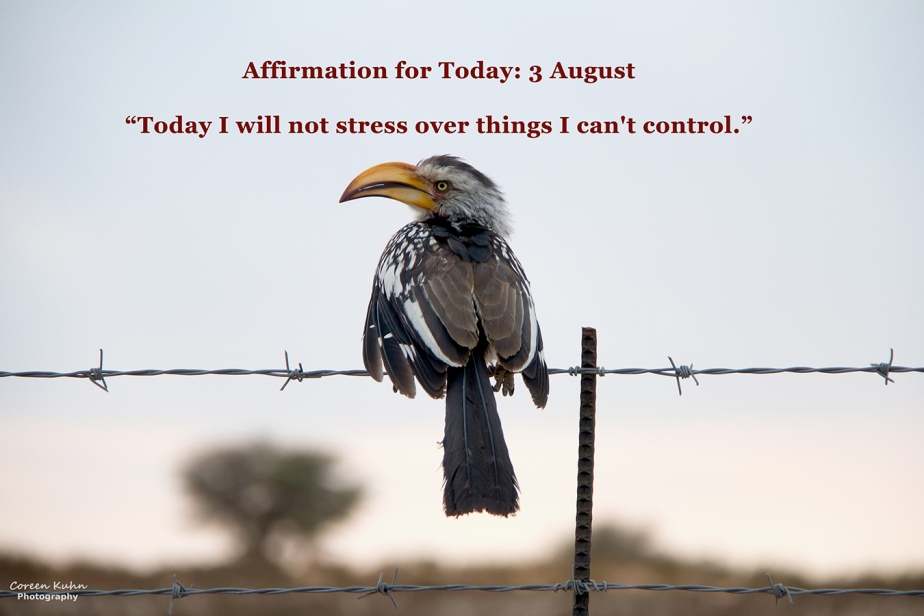 Affirmation for Today: 3 August2021