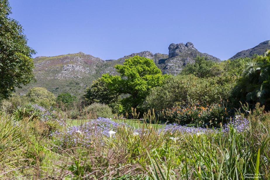 Saturday Landscapes: 31 July2021