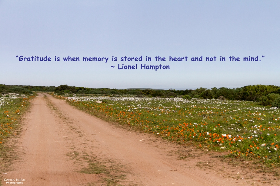 My Photo Someone's Quote: 5 August2021