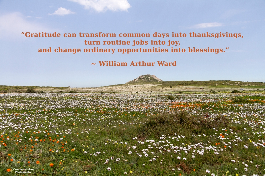 My Photo Someone's Quote: 8 August2021