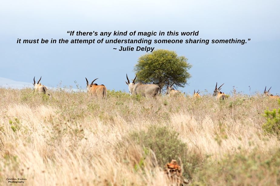 My Photo Someone's Quote: 17 July2021