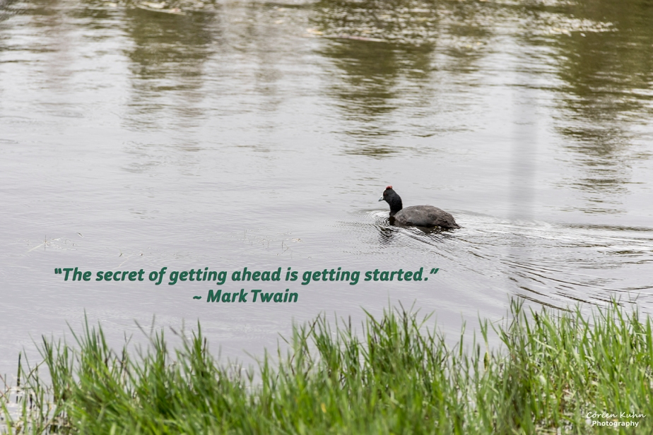 My Photo Someone's Quote: 23 July2021