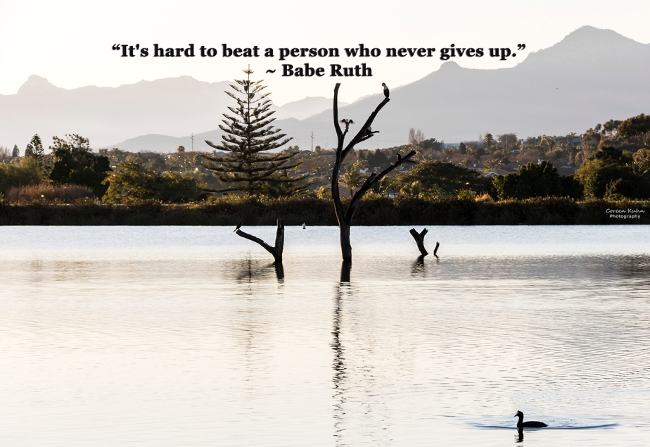 My Photo Someone's Quote: 30 July2021