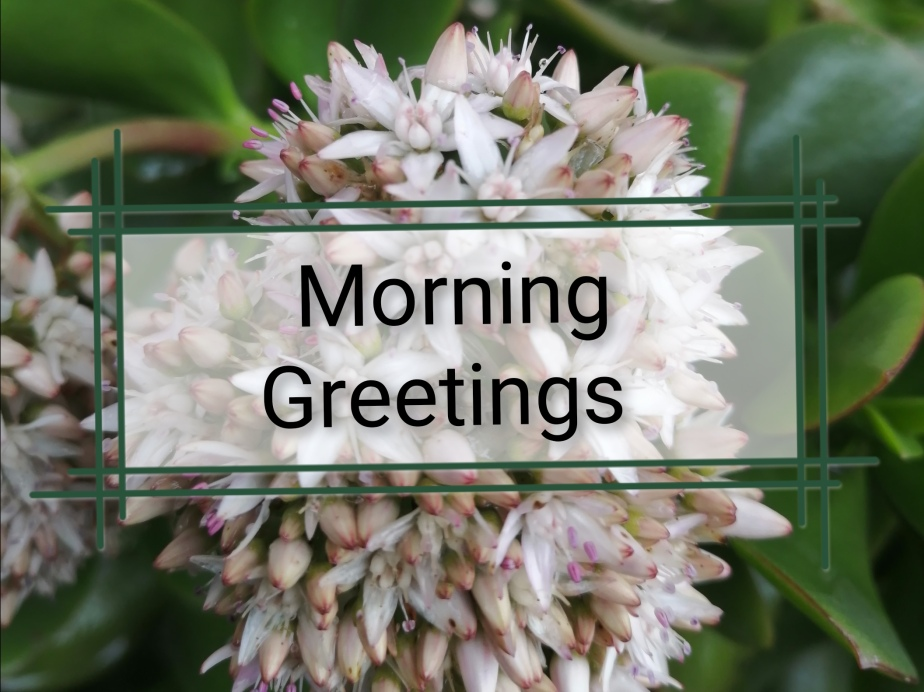 Morning Greetings: 8 July2021