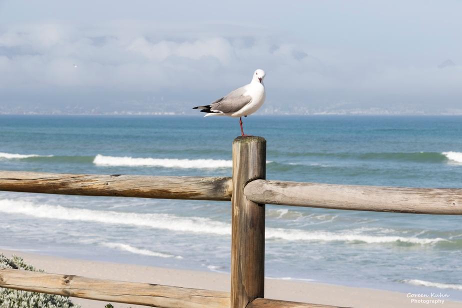 Tuesday Beach Vibes: 14 September2021