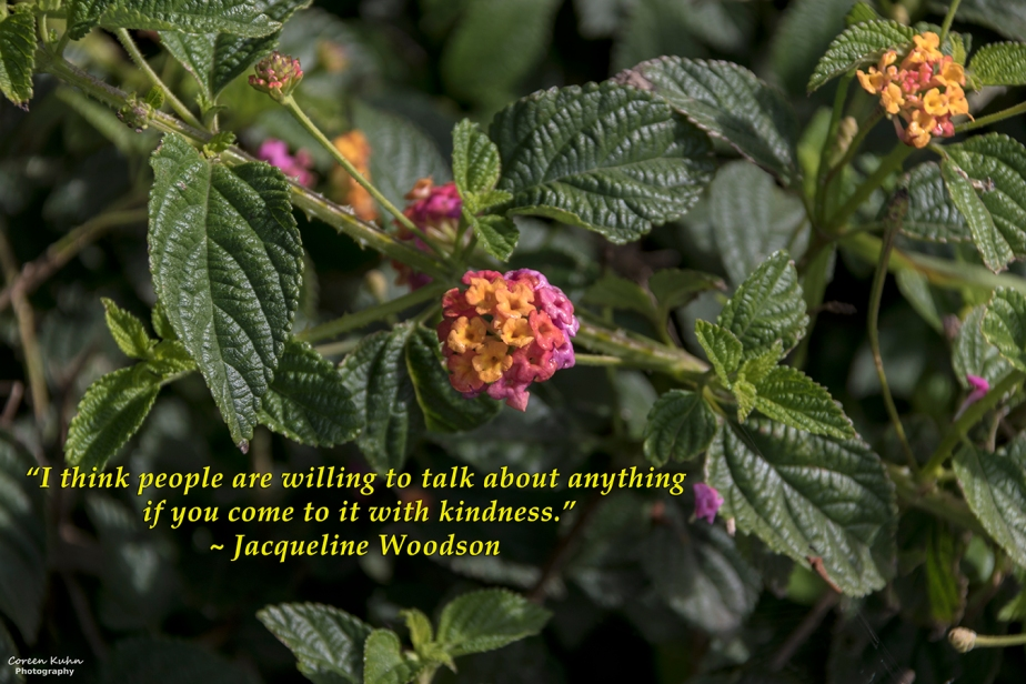 My Photo Someone's Quote: 6 August2021