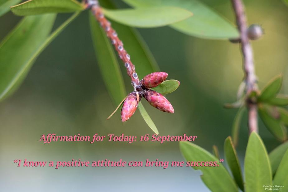 Affirmation for Today: 16 September2021