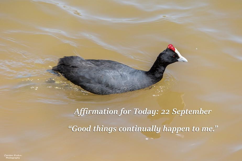 Affirmation for Today: 22 September2021