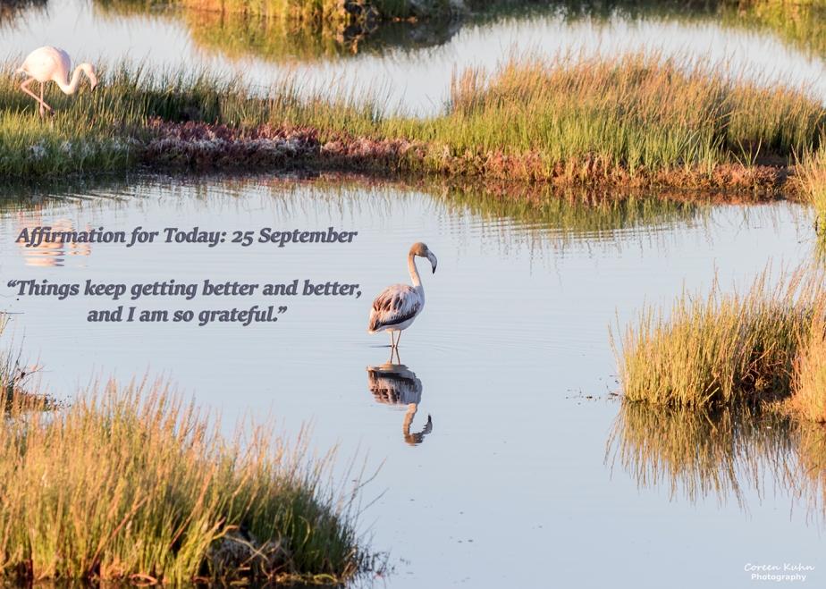 Affirmation for Today: 25 September2021