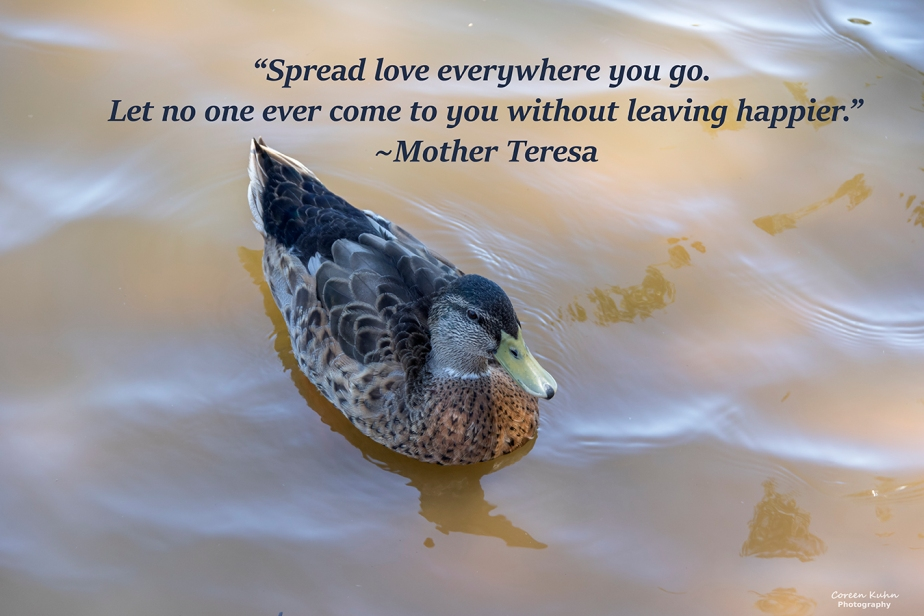 My Photo Someone's Quote: 26 September2021