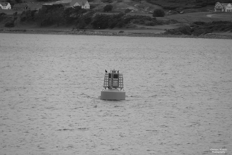 Black and White Photography: Stornoway#2