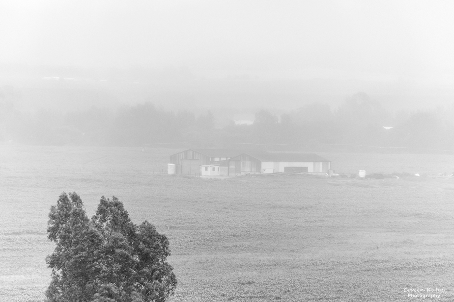 Black and White Photography: Stonehill River Lodge#1