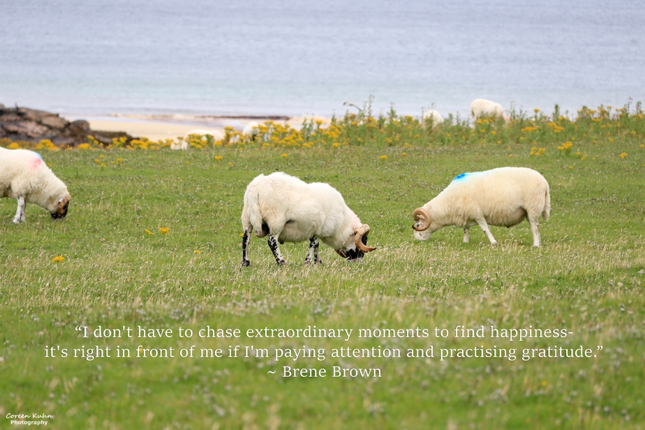 My Photo Someone's Quote: 20 October2021