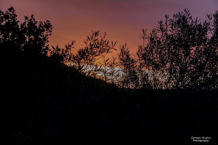 Stonehill River Lodge – Beautiful Landscapes#34