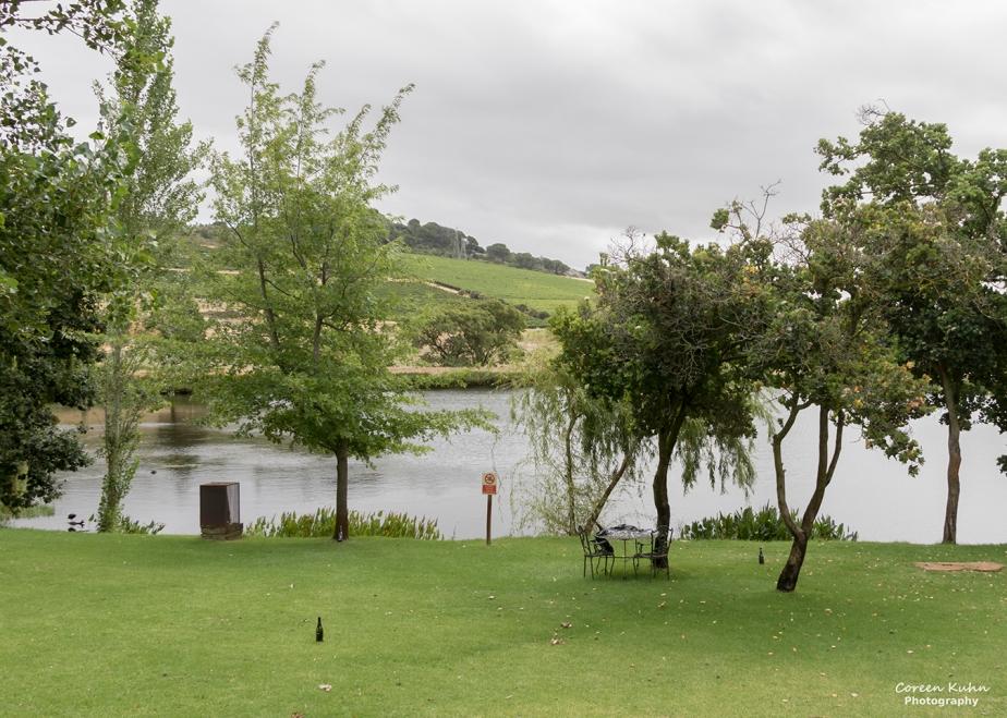 Rhebokskloof Wine Estate – Beautiful Landscapes#16